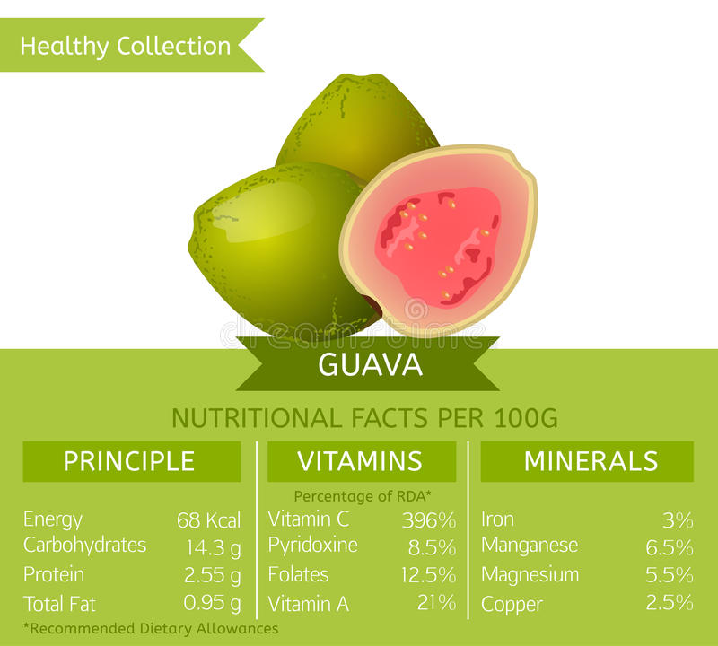 Healthy Collection Image vector illustration