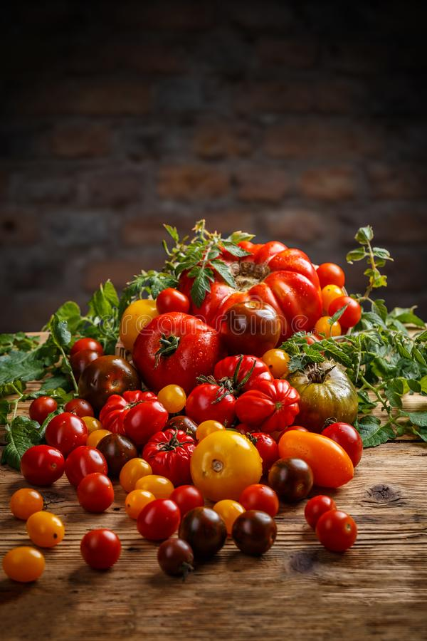 Healthy colorful tomatoes stock photography