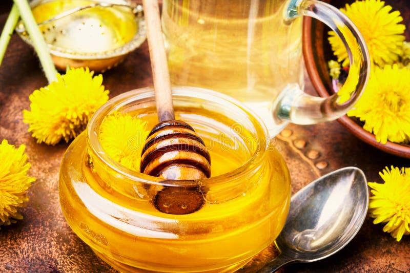 Healthy dandelion honey royalty free stock image