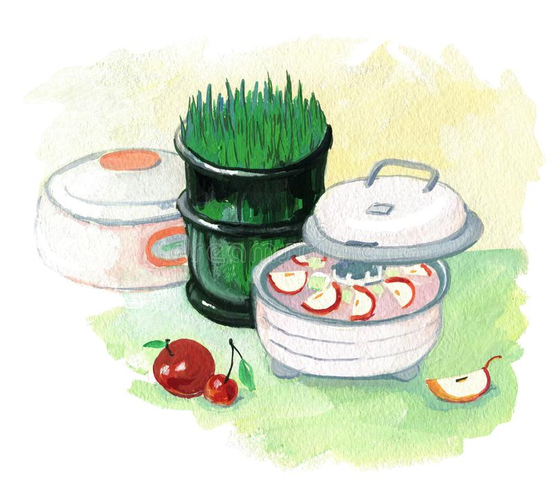 Healthy Diet. Dehydrator and seed germinatorr. Cherry and apple. Painting with gouache. Healthy Diet. Dehydrator and seed germinator. Cherry and apple. Painting vector illustration