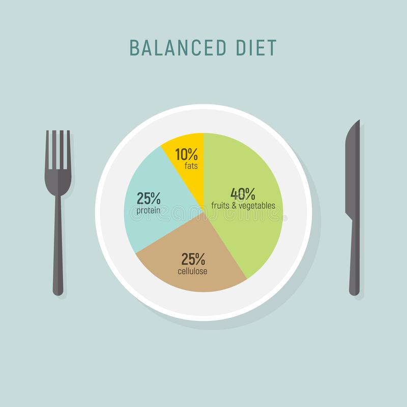 Healthy diet food, balance nutrition plate. Vector health meal chart infographic, diet plan concept vector illustration