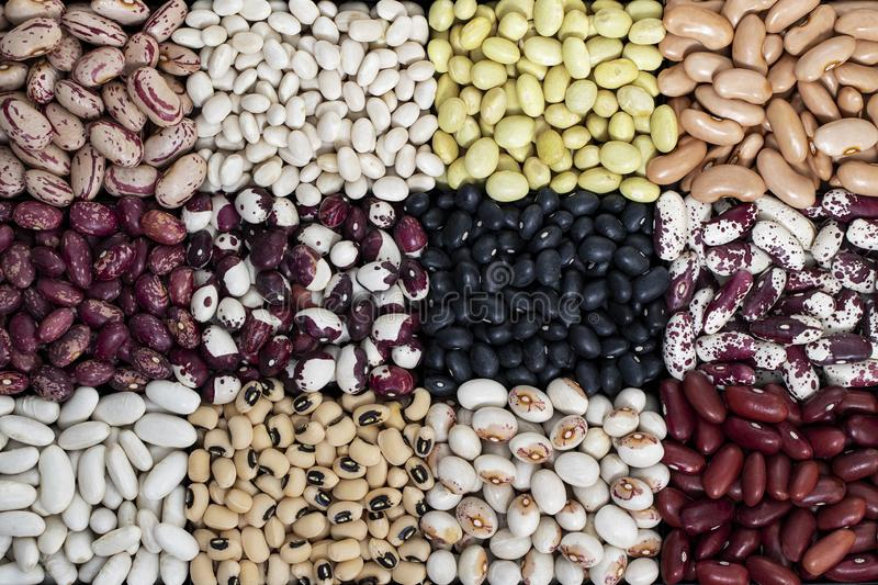 Healthy diet vegan food, sources of vegetable proteins: different types of legumes. Spain royalty free stock photos