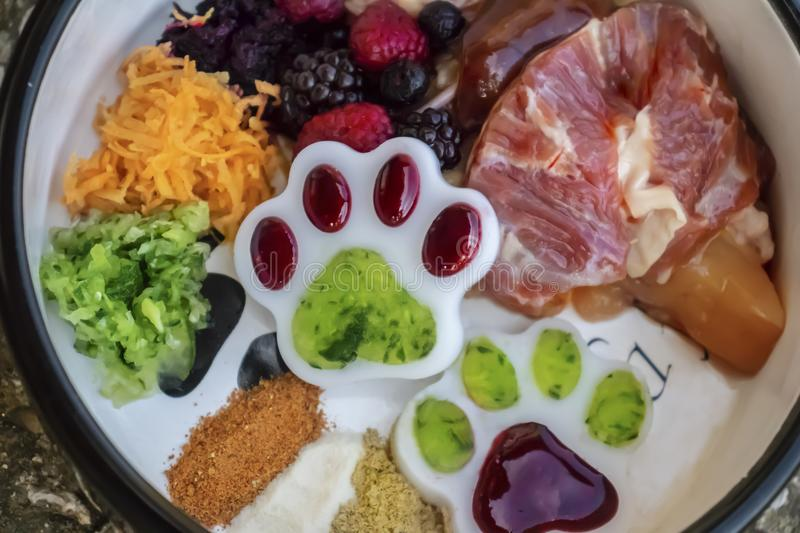 Barf diet, natural food for dog and cat. Healthy dog food, barf diet, healthy paws for dogs. Natural dog food in bowl. Raw food, raw meat royalty free stock photography