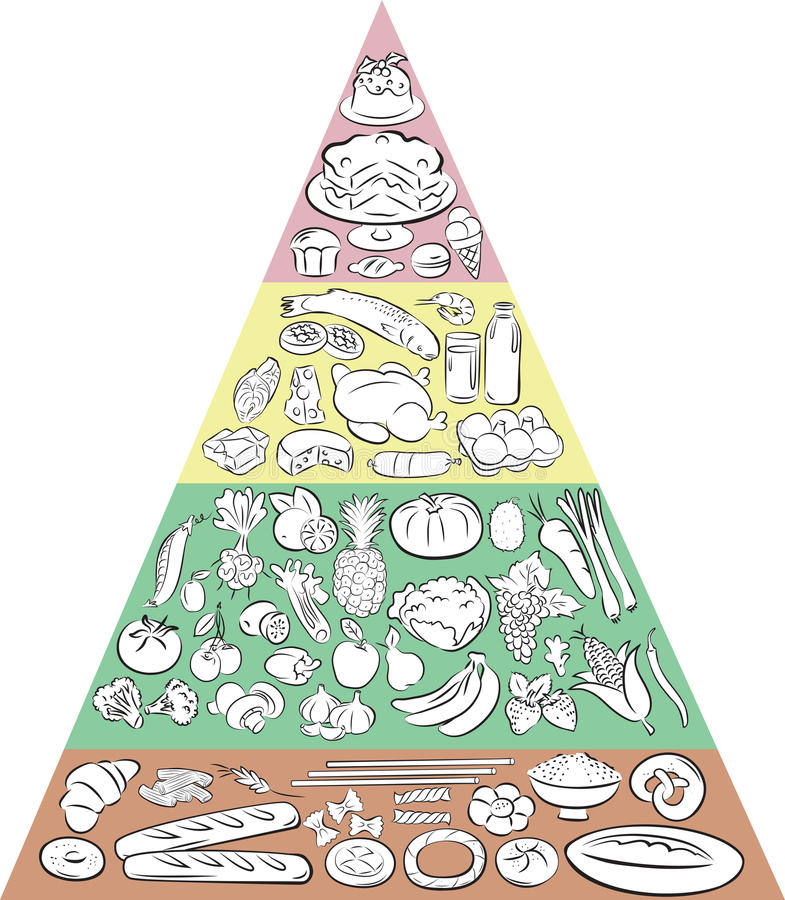 Food Pyramid. Vector illustration of Food Pyramid showing the main Food Groups royalty free illustration