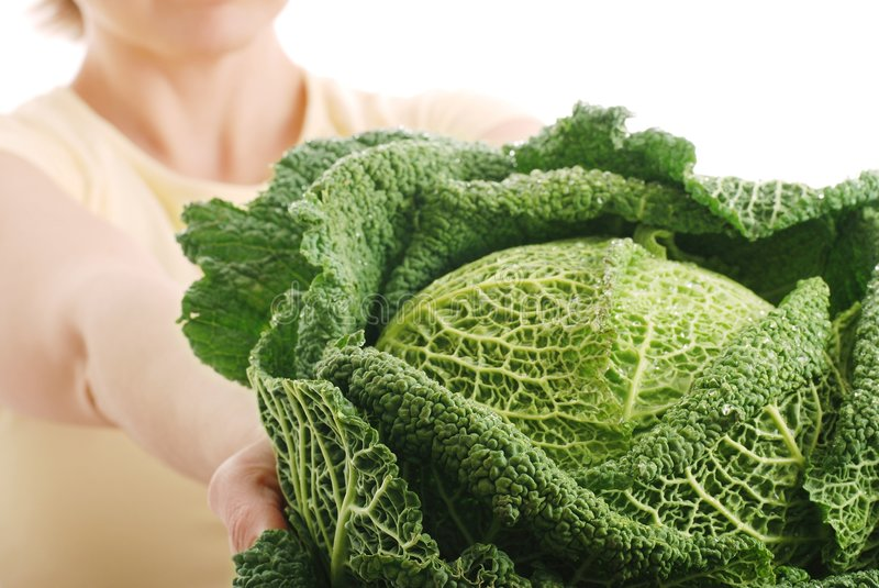 Healthy eating savoy cabbage royalty free stock image