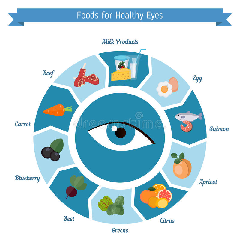 Healthy eyes foods infographics. Infographics of food helpful for healthy eyes. Best foods for the healthy eyes royalty free illustration