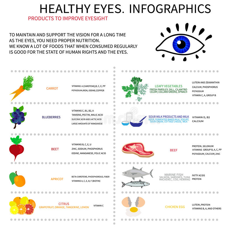 Healthy eyes. Infografics. Infographics about foods that are good for eye health. Displays information about vitamins and minerals, which are needed for the eyes royalty free illustration