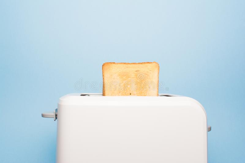Toast in a toaster on a blue background. Healthy fashion food of breakfast. Toast in a toaster on a blue background royalty free stock photos