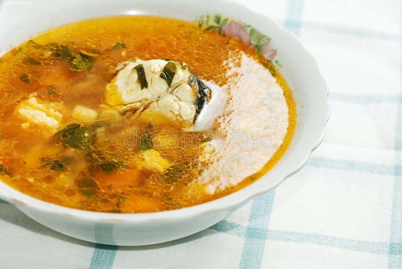 Healthy fish soup royalty free stock photo