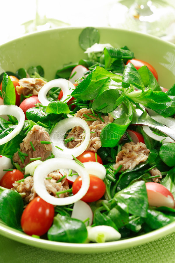 Healthy food. Salad with tunny and vegetable royalty free stock images