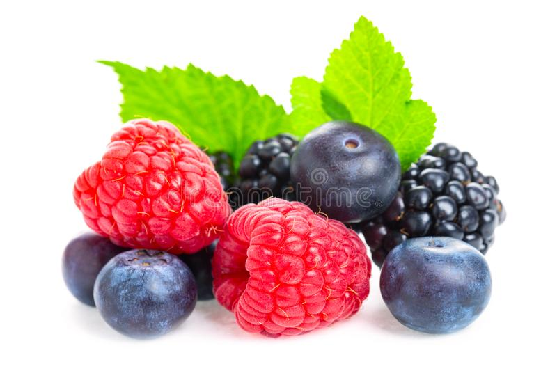 Healthy food berries set. Macro shot of fresh raspberries, blueberries and blackberries with leaf isolated on white background stock photos