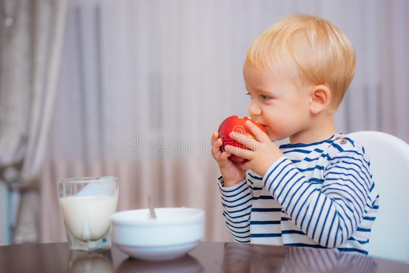 Healthy food. Boy cute baby eating breakfast. Baby nutrition. Eat healthy. Toddler having snack. Healthy nutrition. Vitamin concept. Child eat apple. Kid cute royalty free stock photo