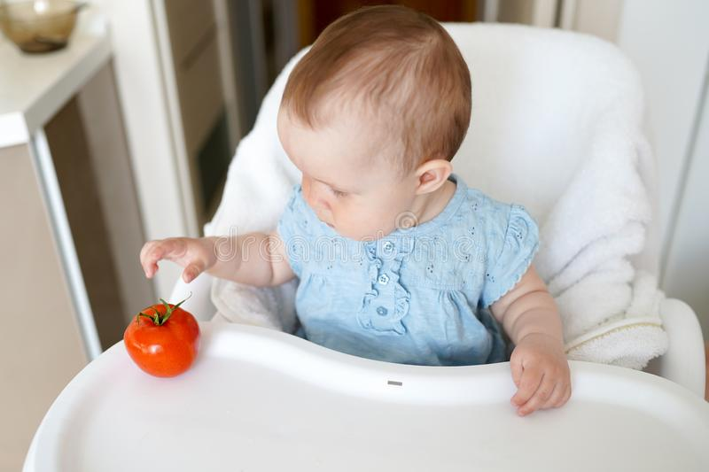 Healthy food for children. Adorable little baby sitting in her chair and playing with vegetables . small girl eat tomato royalty free stock photo