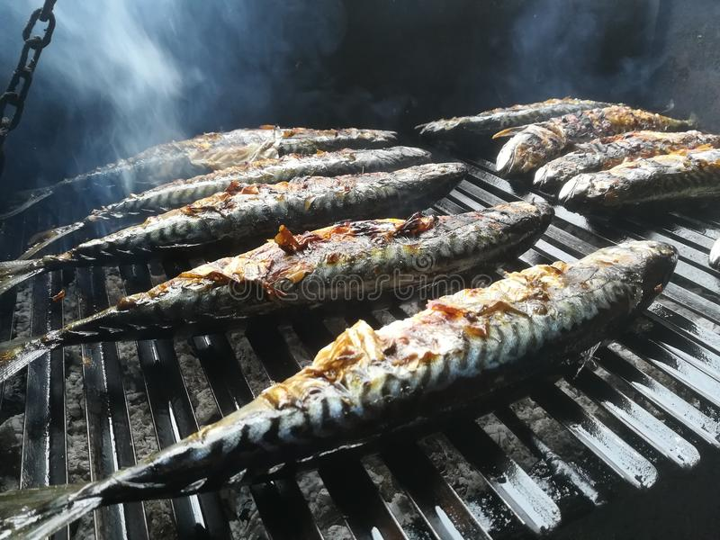 Fish mackerel on the grill stock images