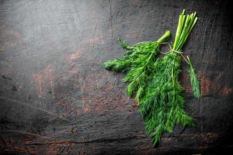 Healthy food. Fresh dill stock images