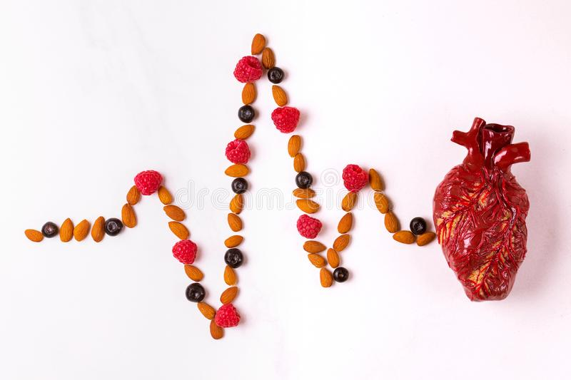 Healthy food, heart model and almond cardiogram. Medical abstract concept royalty free stock photography