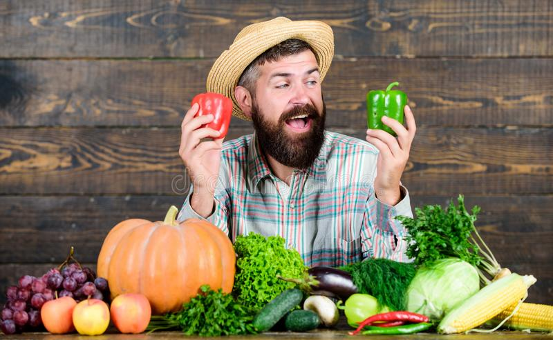 Healthy food is healthy life. organic and natural food. happy halloween. seasonal vitamin food. Useful fruit and. Vegetable. harvest festival. man chef with royalty free stock photos