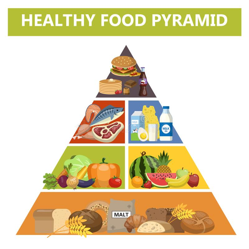Healthy food pyramid. Different groups of products stock illustration