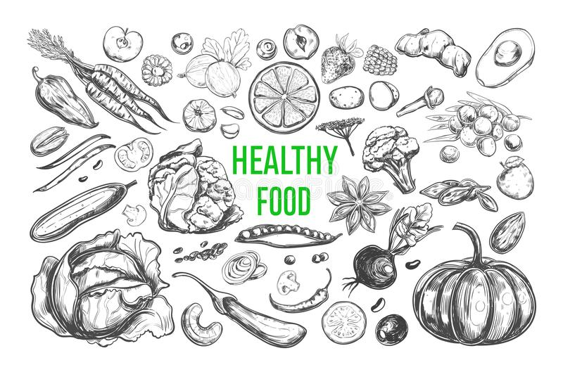 Healthy food vector royalty free illustration