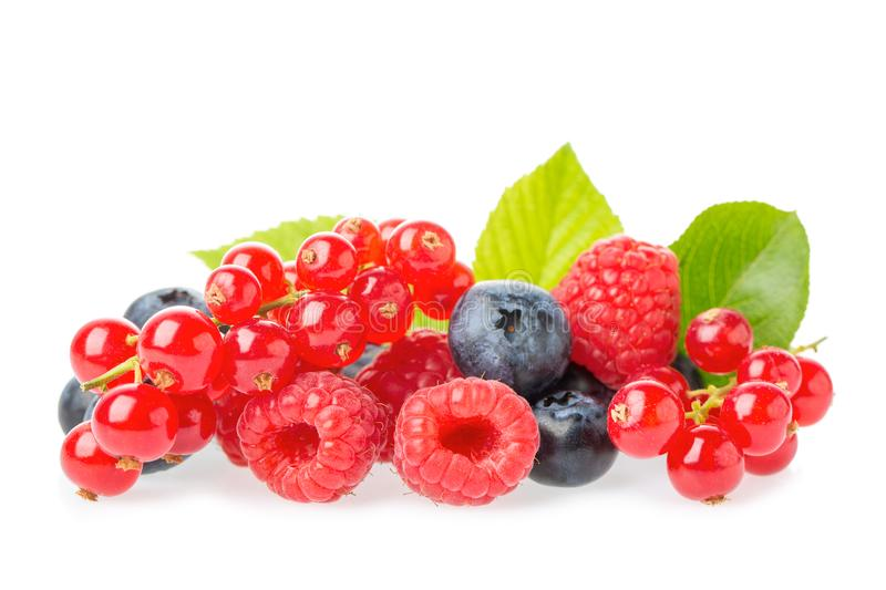 Healthy fresh food berries group. Macro shot of fresh raspberries, blueberries, blackberries, red currant and blackberry with. Leaves isolated on white royalty free stock images