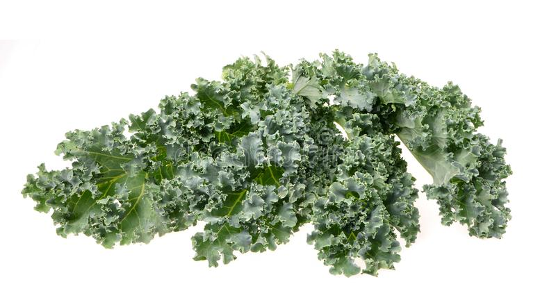 A healthy fresh  organic curly kale leaves  on an isolated white royalty free stock photography