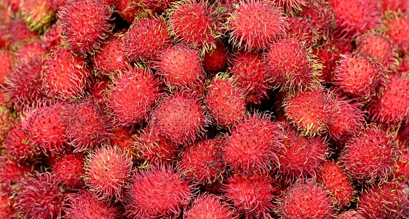 Healthy Fresh Red Rambutan Fruits background image royalty free stock images