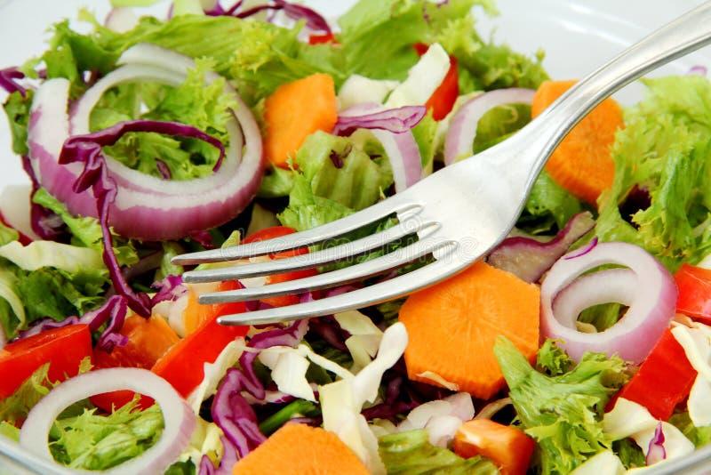 Healthy Fresh Salad Stock Photography