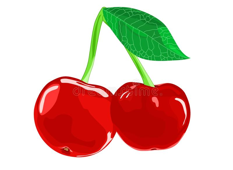 Healthy Fruit Fresh Red Cherry Balance Life. Let Eat Juicy Fruit stock illustration