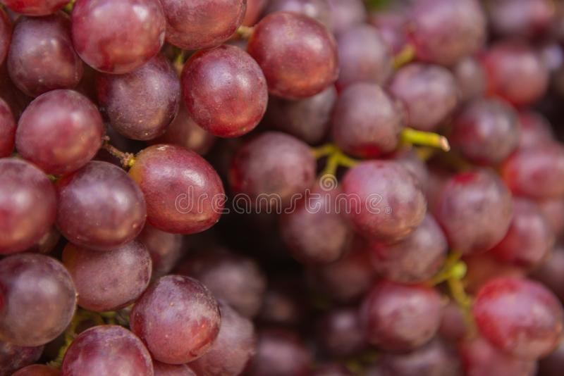 Healthy fruits red wine grapes background stock images
