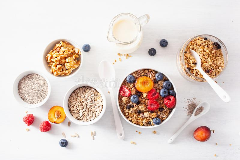 Healthy granola for breakfast with berry fruit nut, plant milk stock image