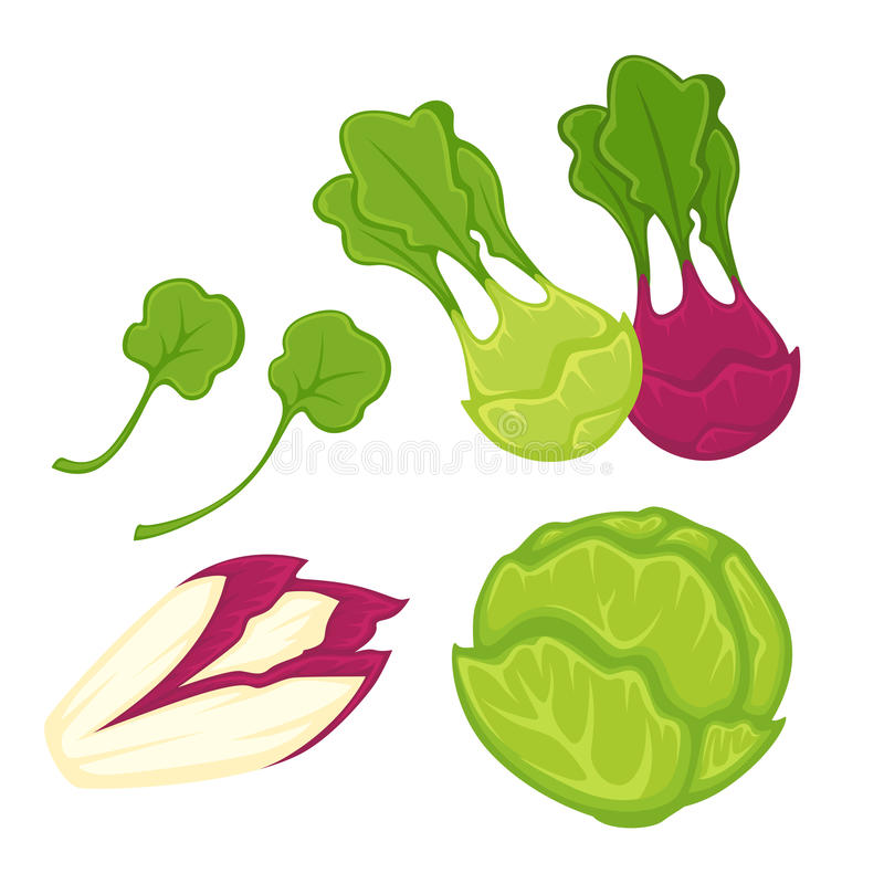 Healthy greens and vegetables isolated cartoon illustrations set royalty free illustration