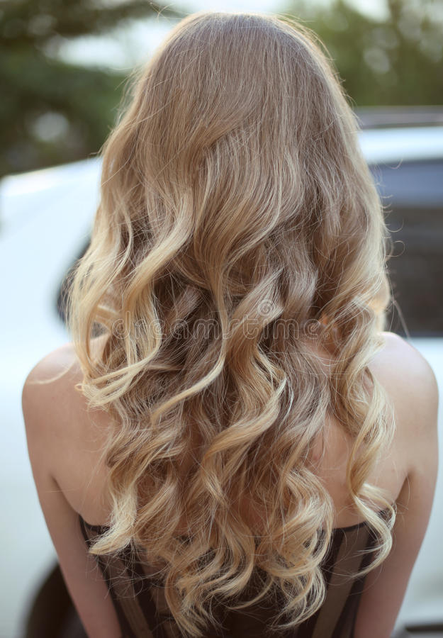 Healthy hair. Curly long hairstyle. Back view of Blond hairs. ha stock image