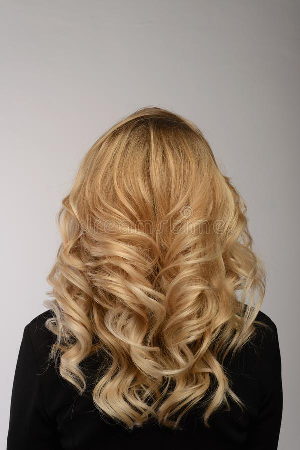 Healthy hair. Curly long hairstyle. Back view of Blond hairs. stock photos