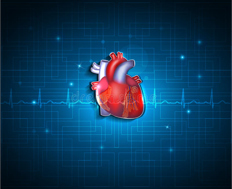 Healthy heart on a blue technology background royalty free illustration