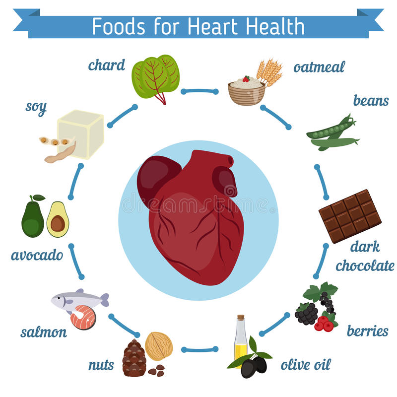 Healthy heart foods infographics stock vector illustration of download healthy heart foods infographics stock vector illustration of cardiology graphic 78454582 ccuart Choice Image