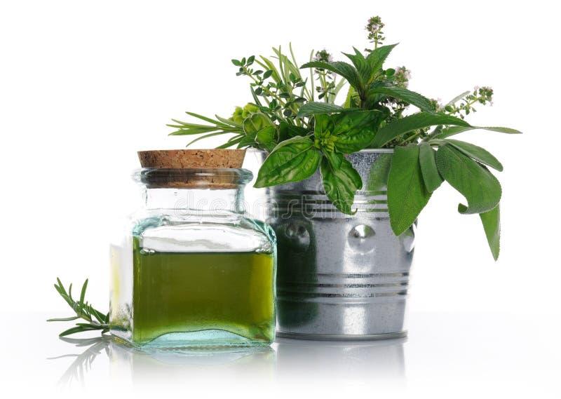 Healthy herbs stock image
