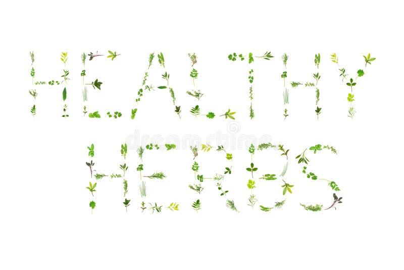 Healthy Herbs stock illustration