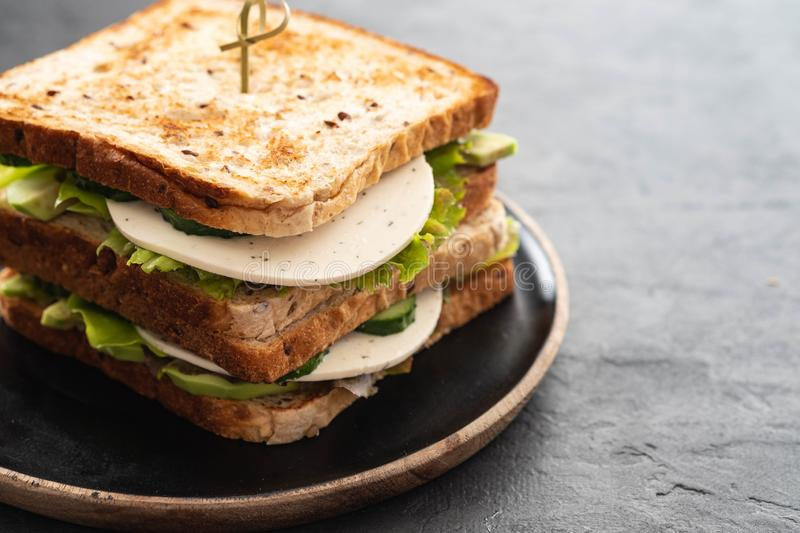 Healthy Homemade Vegetarian Veggie Sandwich with Lettuce. cucumber, avocado, Cheese. Copy space. Healthy Homemade Vegetarian Veggie Sandwich with Lettuce stock images