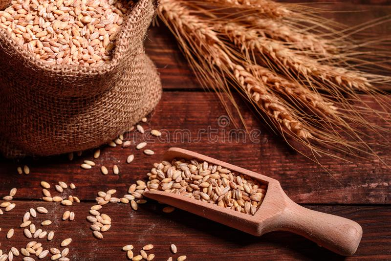 Healthy ingredients for rolls and bread with whole grains. Organic ingredients for bread preparation stock photo
