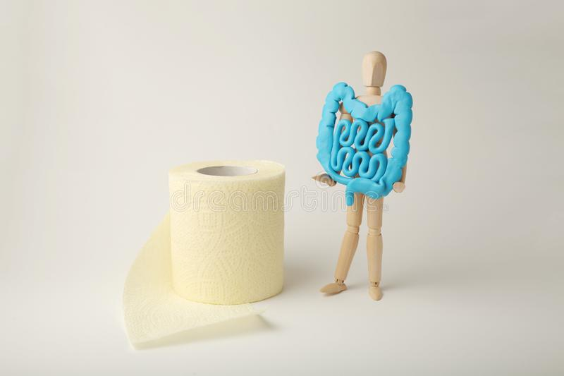Healthy intestines in hands of human figure. Digestive problems, colic, dysbacteriosis. Toilet paper.  royalty free stock images