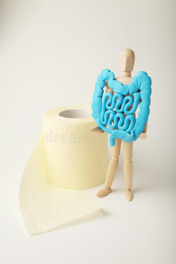 Healthy intestines in hands of human figure. Digestive problems, colic, dysbacteriosis. Toilet paper.  royalty free stock image