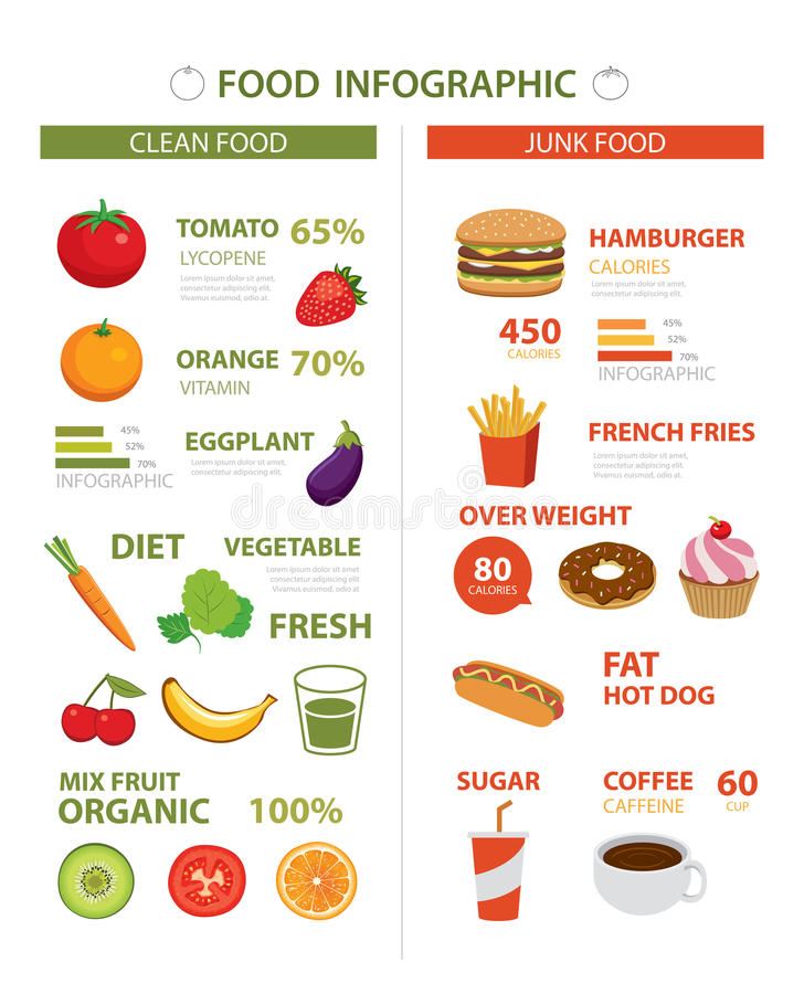 Healthy food infographic stock vector  Illustration of healthy