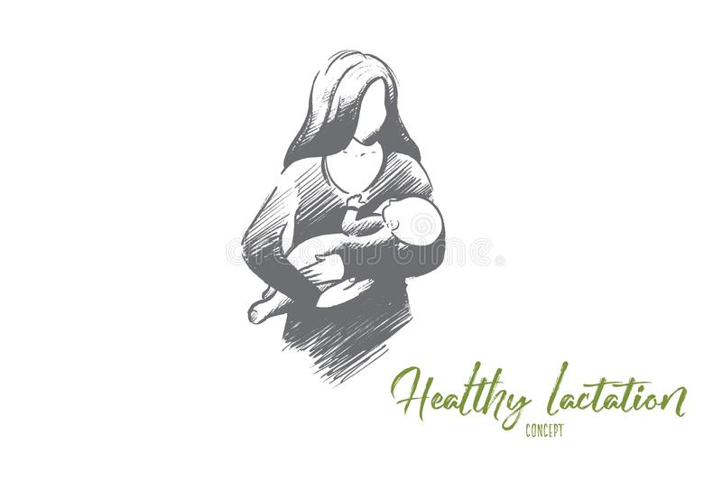 Healthy lactation concept. Hand drawn isolated vector. Healthy lactation concept. Hand drawn mother breastfeeding baby. Baby eating mother`s milk isolated vector illustration