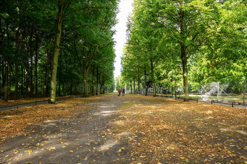 Healthy lifestyle concept. Tiergarten park with lush flora and walking people. Autumn nature in Berlin background. Healthy lifestyle concept. Tiergarten park stock image