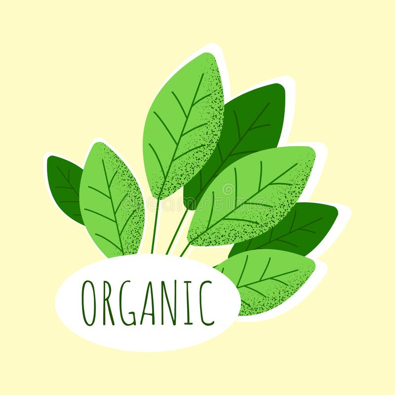 Healthy lifestyle. Fresh and natural eco food royalty free illustration