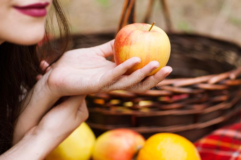 Healthy lifestyle fruits picnic nature concept. stock images