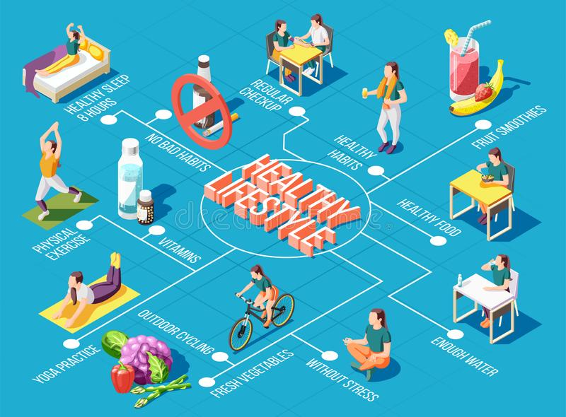 Healthy Lifestyle Isometric Flowchart. Healthy lifestyle  flowchart with outdoor cycling physical exercises yoga practice regular checkup fresh food isometric stock illustration