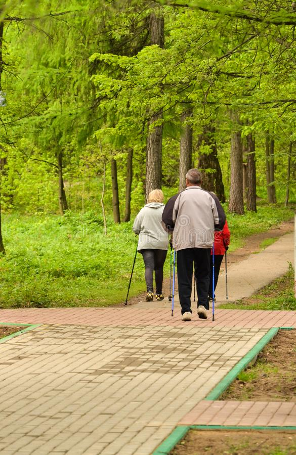 Healthy lifestyle. Nordic walking. Adult man and two women are engaged in athletic walking. / royalty free stock image