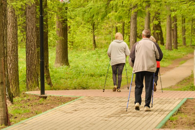 Healthy lifestyle. Nordic walking. Adult man and two women are engaged in athletic walking.  stock images