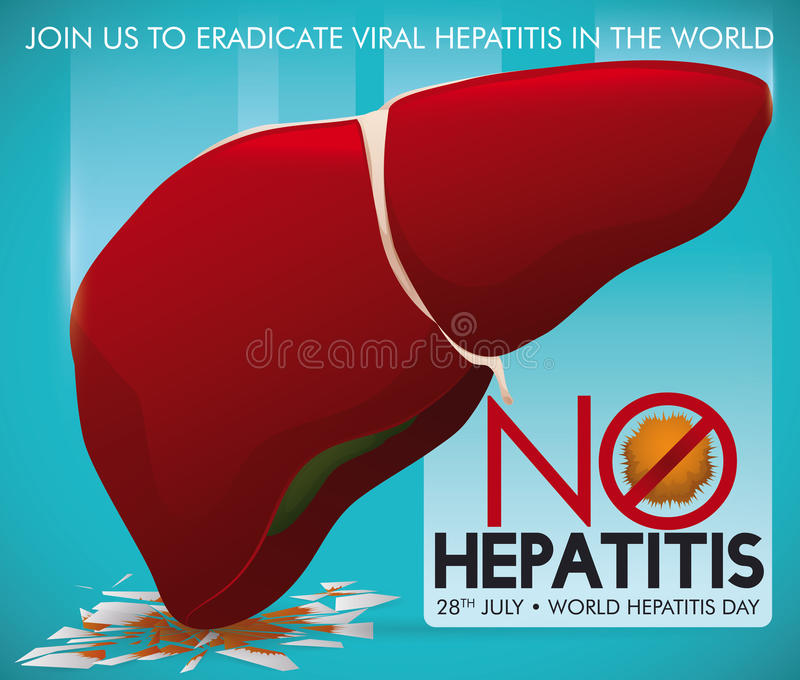 Healthy Liver Crushing Virus Image, Promoting Eradication of Hepatitis, Vector Illustration. Campaign promoting a healthy liver smashing the hepatitis virus once royalty free illustration